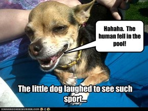The little dog laughed to see such sport