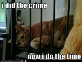 i did the crime  now i do the time