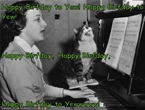 Happy Birfday to Yew! Happy Birfday to Yew! Happy Birfday, Happy Birfday,  Happy Birfday to Yewwwww!