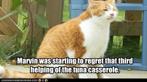 Marvin was starting to regret that third helping of the tuna casserole.