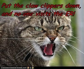 Put the claw clippers down, and no one visits the ER!