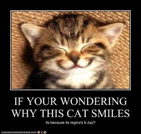 IF YOUR WONDERING WHY THIS CAT SMILES