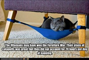 The Ottomans may have won the Furniture War. Their plans of catapults was great, but they did not account for 20 hours per day of napping.