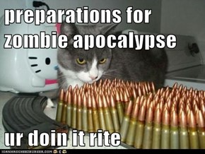 preparations for zombie apocalypse  ur doin it rite
