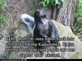 Yesh,  Mom.  Ai noes ai kan maek lotz  uf frens at Kamp Kuppykakez.  Iz jus werreed bout  da cork poppin owt wen  ai getz  ober  ekcited.