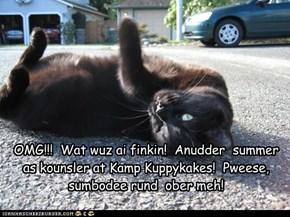 OMG!!!  Wat wuz ai finkin!  Anudder  summer as kounsler at Kamp Kuppykakes!  Pweese,  sumbodee rund  ober meh!