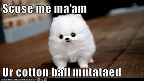 Scuse me ma'am  Ur cotton ball mutataed