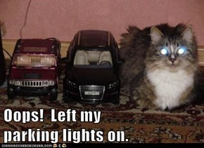 Oops!  Left my                   parking lights on.