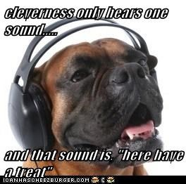"cleverness only hears one sound.....  and that sound is, ""here have a treat"""