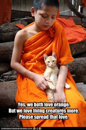 Yes, we both love orange. But we love living creatures more. Please spread that love.