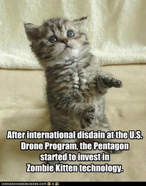 After international disdain at the U.S. Drone Program, the Pentagon started to invest in  Zombie Kitten technology.