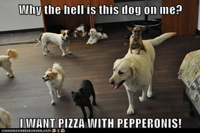 Why the hell is this dog on me?  I WANT PIZZA WITH PEPPERONIS!