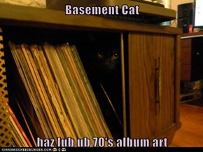 Basement Cat  haz lub ub 70's album art