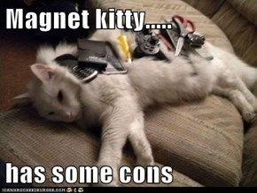 Magnet kitty.....  has some cons