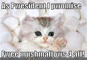 As Pwesident I pwomise  Fwee mushmallows 4 all!