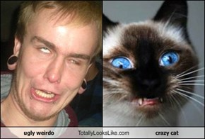 ugly weirdo Totally Looks Like crazy cat