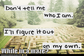 While in a maze?