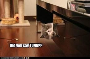 Tuna!