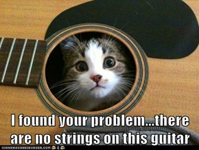 I found your problem...there are no strings on this guitar