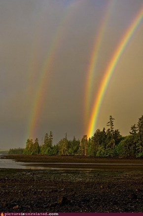 Quadruple Rainbow All the Way