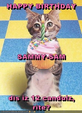 HAPPY BIRTHDAY SAMMY-SAM dis iz 12 candulz, rite?