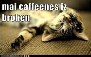 mai caffeenes iz broken