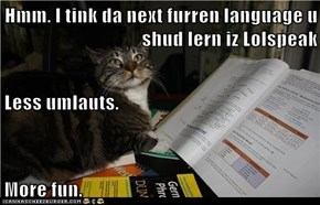 Hmm. I tink da next furren language u shud lern iz Lolspeak Less umlauts.  More fun.