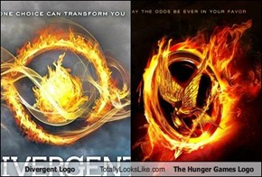 Divergent Logo Totally Looks Like The Hunger Games Logo