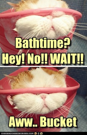 Bathtime?Hey! No!! WAIT!!Aww.. Bucket