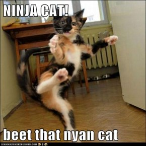 NINJA CAT!  beet that nyan cat