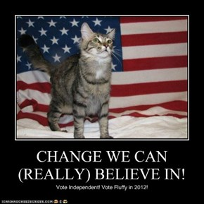 CHANGE WE CAN (REALLY) BELIEVE IN!