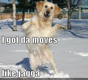 I got da moves like jagga