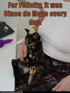 For Felicity, it was Cinco de Mayo every day.