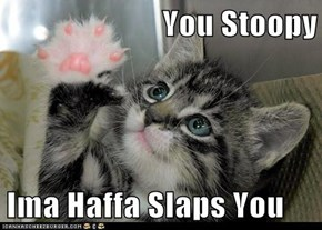 You Stoopy  Ima Haffa Slaps You