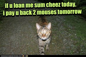 if u loan me sum cheez today, i pay u back 2 mouses tomorrow