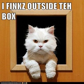 I FINKZ OUTSIDE TEH BOX