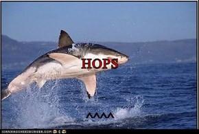 HOPS ^^^^