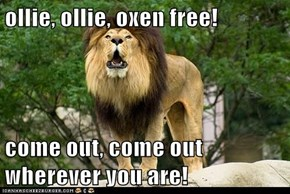 ollie, ollie, oxen free!  come out, come out wherever you are!