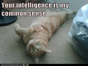 Your intelligence is my common sense