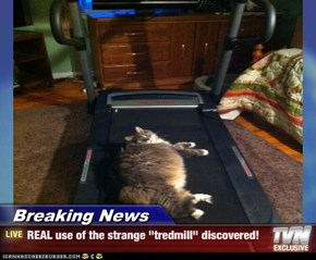 "Breaking News - REAL use of the strange ""tredmill"" discovered!"