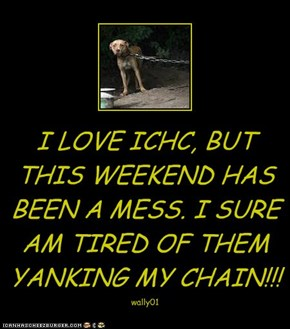 I LOVE ICHC, BUT THIS WEEKEND HAS BEEN A MESS. I SURE AM TIRED OF THEM YANKING MY CHAIN!!!