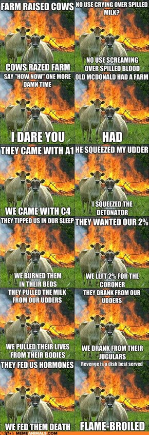 Introducing Evil Cows