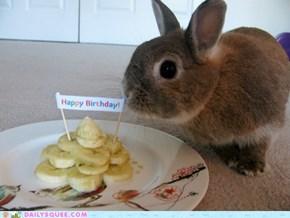 Bunday Birthday!
