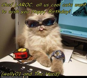 Chef LAROC, all us cool cats want to wish you Happy Birthday!   (wally01 and The Herd)
