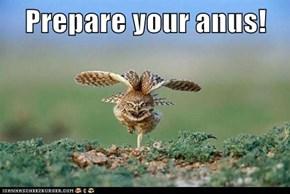 Prepare your anus!
