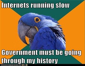 Paranoid Parrot: Headed for Guantanamo