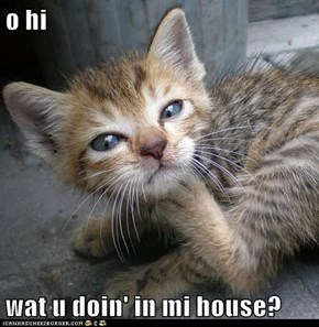 o hi  wat u doin' in mi house?
