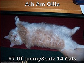 Aih Am Ollie  #7 Uf luvmy8catz 14 Cats