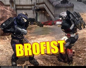 Halo Bro Fist