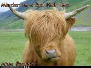 Murder on a Bad Hair Day  Anne George